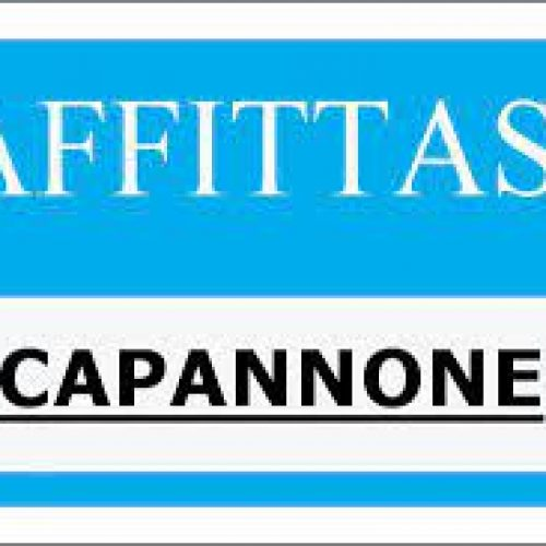 Capannone-affitto