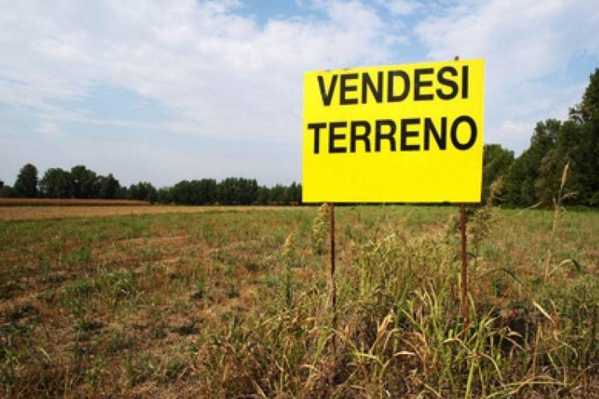 valutazione-terreno-agricolo-2